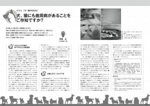 8020会誌vol15_A-16_実はペットにもある歯周病 のコピー